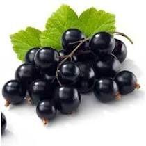 Fruchtmarmelade aus Gänseblümchen - Frucht einer einzigen Art mit schwarzen Johannisbeeren, ohne Zusatz von Äpfeln usw., Verhältnis Obst: Zucker - 2: 1, mit Zusatz von Vitamin C. 520 ml Rodinná farma Sedmikráska