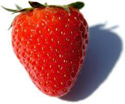 Fruchtmarmelade von Daisy - Erdbeerfrucht einer einzigen Art, ohne Zusatz von Äpfeln usw., Verhältnis Obst: Zucker - 2: 1, mit Zusatz von Vitamin C. 520 ml Rodinná farma Sedmikráska